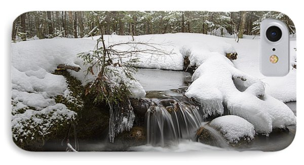 Winter Forest - Lincoln New Hampshire Usa IPhone Case by Erin Paul Donovan