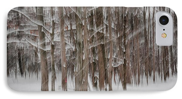 Winter Forest Abstract II IPhone Case by Elena Elisseeva