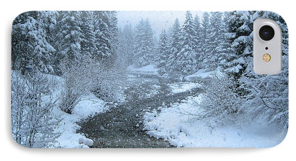 Winter Forest Phone Case by David Rucker