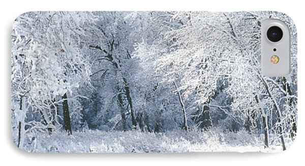 Winter, Forest, Yosemite National Park IPhone Case by Panoramic Images