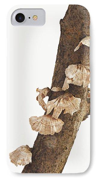 Winter Fungi IPhone Case