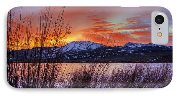 Winter Glow Phone Case by Dianne Phelps