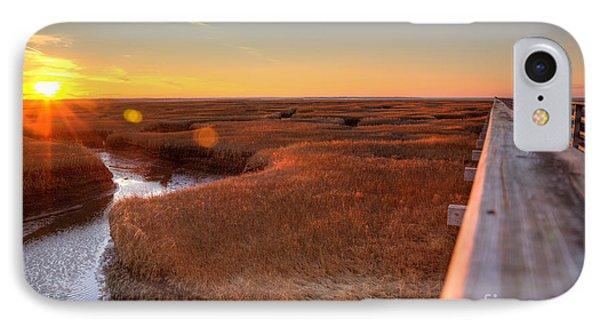 Winter Gold IPhone Case by Michelle Wiarda
