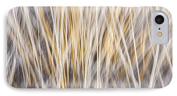 Winter Grass Abstract Phone Case by Elena Elisseeva