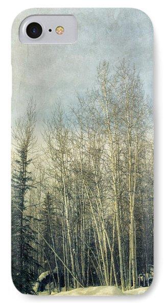 Winter Grove IPhone Case by Priska Wettstein