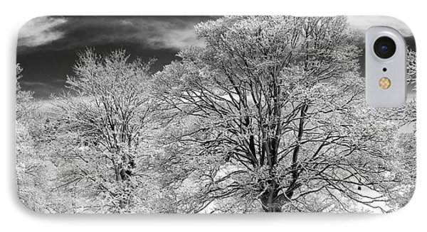 Winter Horse Chestnut Trees Monochrome Phone Case by Tim Gainey