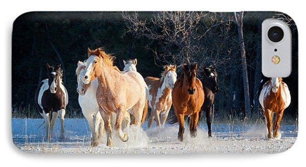 Winter Horses IPhone Case by Inge Johnsson