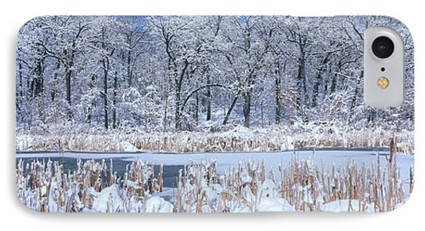 Winter, Illinois, Usa IPhone Case by Panoramic Images