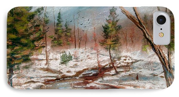 Winter In Canane Phone Case by Bruce Schrader