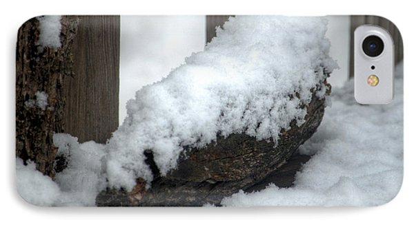 Winter In The Heartland 4 Phone Case by Deborah Smolinske