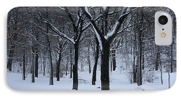 IPhone Case featuring the photograph Winter In The Park by Dora Sofia Caputo Photographic Art and Design