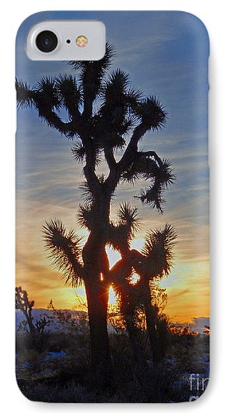 Winter Joshua IPhone Case by Suzette Kallen