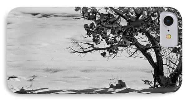 IPhone Case featuring the photograph Winter Juniper  by Eric Rundle