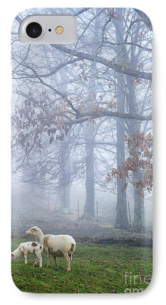 Winter Lambs And Ewe Foggy Day Phone Case by Thomas R Fletcher