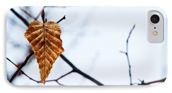 IPhone Case featuring the photograph Winter Leaf by Kennerth and Birgitta Kullman