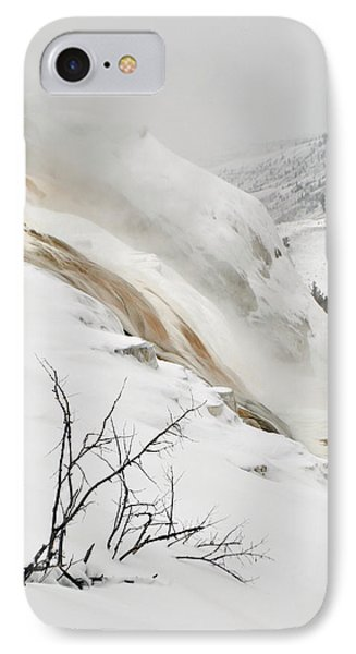 Winter Limbs IPhone Case by Bruce Gourley