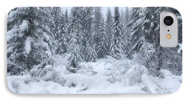 Winter Magic IPhone Case by Darren  White