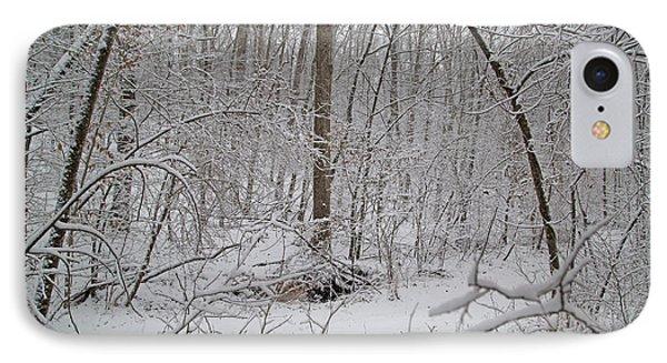 Winter Magic Mystic IPhone Case by Betsy Knapp