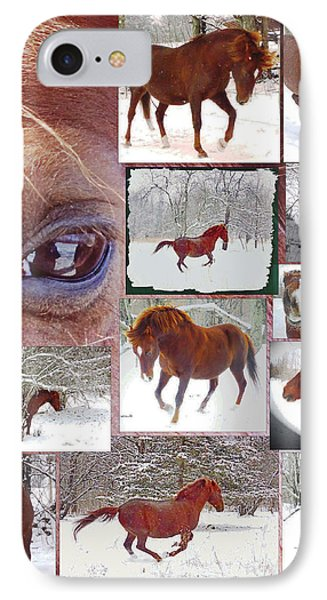 Winter Moments- With The Flashy Paso Fino Stallion IPhone Case