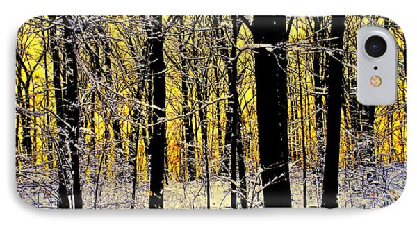 Winter Mood Lighting Phone Case by Frozen in Time Fine Art Photography