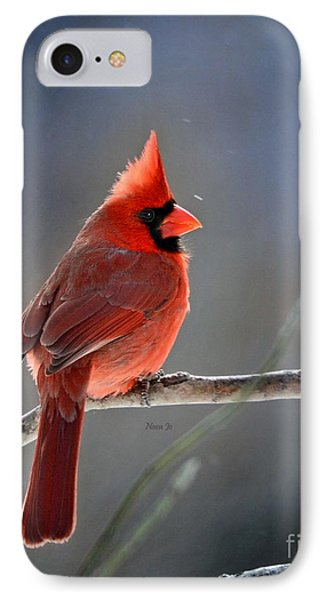 Winter Morning Cardinal IPhone Case