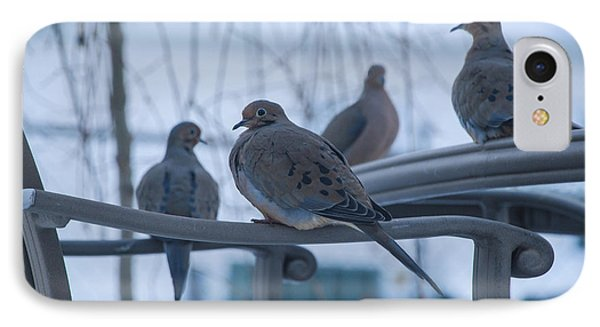 IPhone Case featuring the photograph Winter Mourning by Phil Abrams