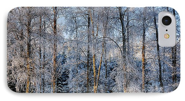 Winter Nature Ans Scenery IPhone Case by Christian Lagereek