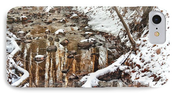 Winter - Natures Harmony Phone Case by Mike Savad