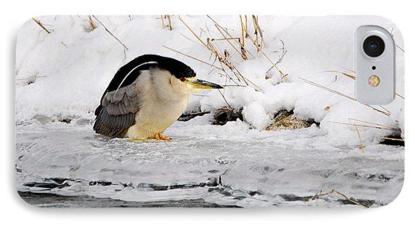 Winter Night Heron IPhone Case by Marty Fancy