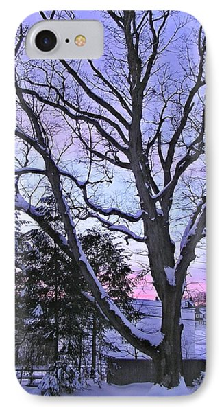 Winter Oak 2 IPhone Case by John Wartman