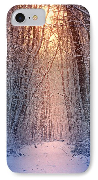 Winter Pathway IPhone Case by Rob Blair