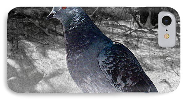 IPhone Case featuring the photograph Winter Pigeon by Nina Silver