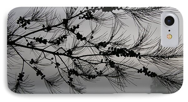 Winter Pine Branch IPhone Case by Bev Conover