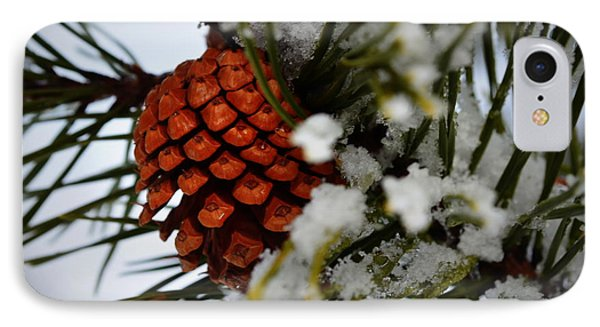 Winter Pine IPhone Case by Guy Hoffman