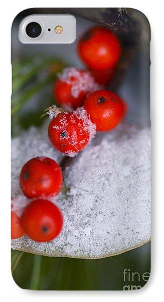 Winter Red Berries IPhone Case by Birgit Tyrrell