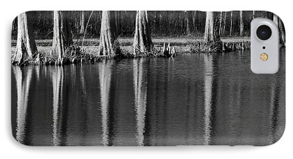 Winter Reflections - Cypress Tree Art Print IPhone Case by Jane Eleanor Nicholas