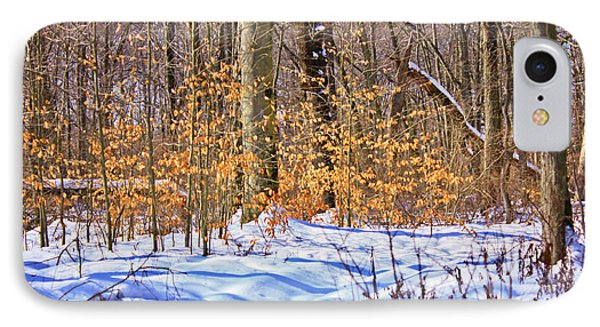Winter Scene 2014 IPhone Case by Mikki Cucuzzo