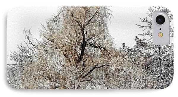 Winter Scene Phone Case by Kathleen Struckle