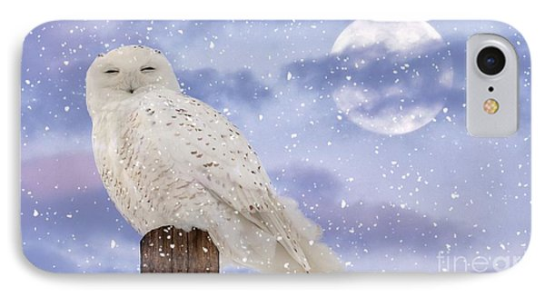 Winter Solstice IPhone Case by Heather King