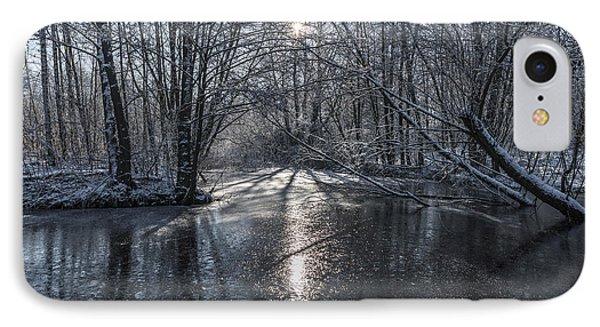Winter Sun Rays IPhone Case by Svetlana Sewell