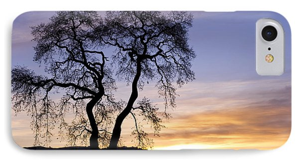 Winter Sunrise With Tree Silhouette IPhone Case by Priya Ghose