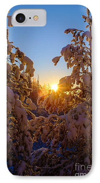 Winter Sunset Behind The Trees IPhone Case