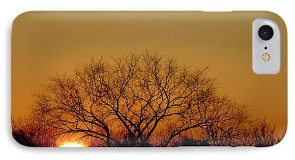 Winter Sunset IPhone Case by Leeon Pezok