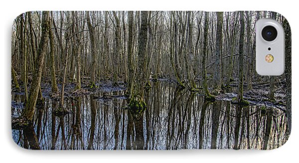 Winter Swamp IPhone Case