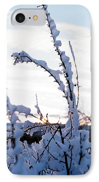 Winter IPhone Case by Terry Reynoldson