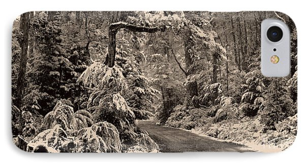 Winter Trail IPhone Case by Phill Petrovic