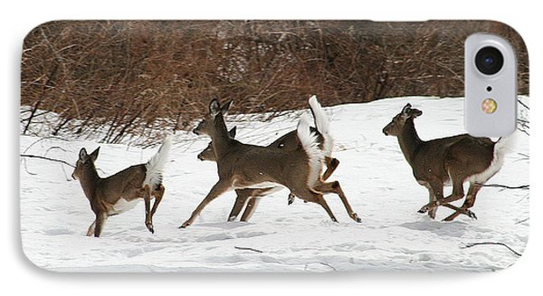 White Tailed Deer Winter Travel IPhone Case by Neal Eslinger
