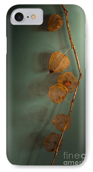 Winter Treasures Phone Case by Jan Bickerton
