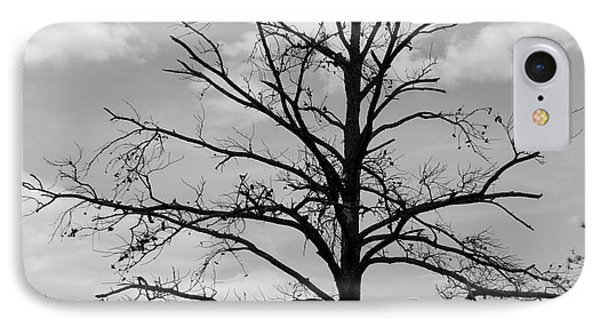 Winter Tree IPhone Case by Andrea Anderegg