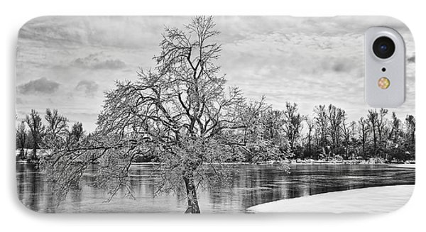 Winter Tree At The Park  B/w IPhone Case by Greg Jackson